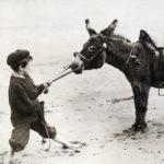 Waarom en wanneer gaan de hakken in het zand?